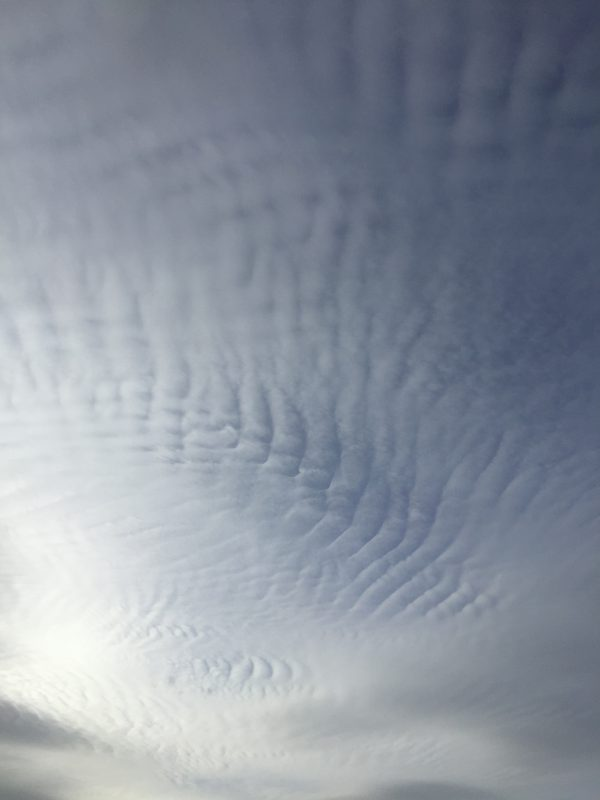 The Sky I.
